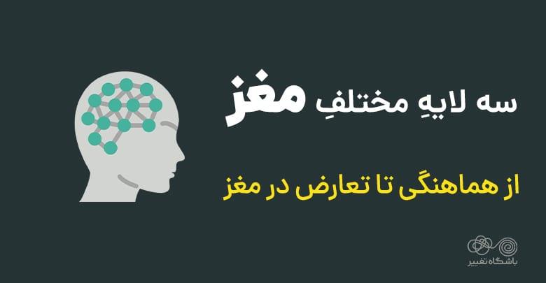 لایههای مختلف مغز