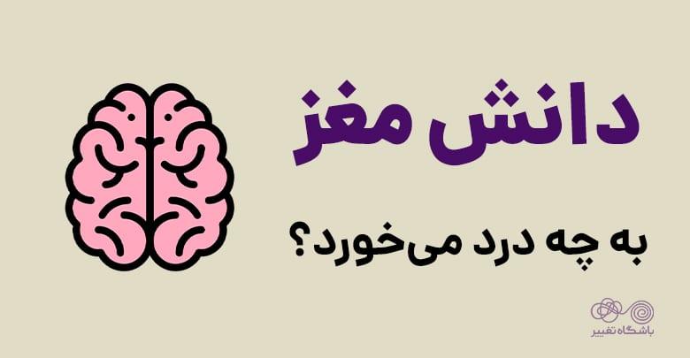 دانش مغز